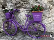 Immagine tratta da repertorio di Onda Lucana®by Miky Da Lioni 2019 Sant'Angelo Le Fratte (pz).jpg00