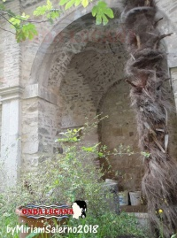 Chiesa e Convento di San Francesco Potenza