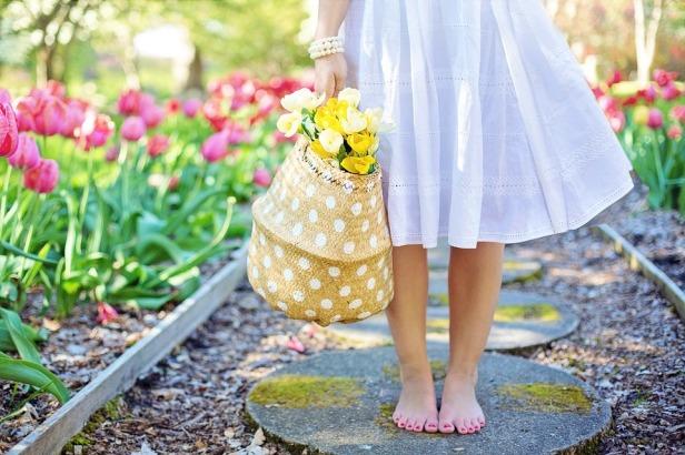 spring-2298279_960_720.jpg