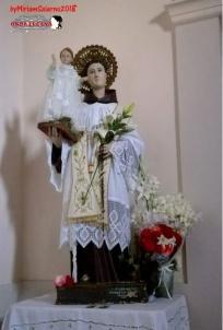 Il Santo Antonio da Padova festeggiato