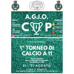dal 21 luglio al 31 agosto AGIO CUP I-Torneo Calcio A11 Vietri di Potenza (pz)