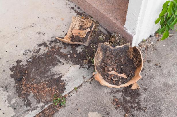 vasi-da-fiori-vaso-di-fiore-rotto-vecchia-frattura-abbandonata-del-94972254.jpg