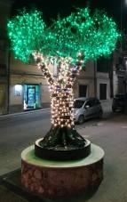 albero illuminato[2713]