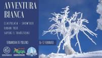 16 Febbraio Terranova di Pollino (pz)