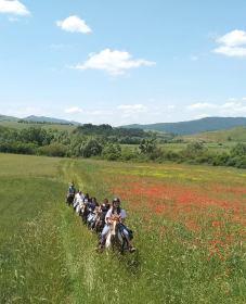 05 Aprile Atella (pz) La Valle dei Cavalli Trekking sui sentieri dei Briganti