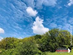 Immagine tratta da repertorio di Onda Lucana®by Paolo Varalla 2019 Viggiano Natura Viggianese.jpg00