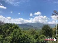 Immagine tratta da repertorio di Onda Lucana®by Paolo Varalla 2019 Viggiano Natura Viggianese.jpg000000
