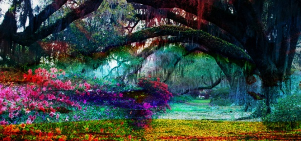 willow-garden-flowers-impressionism_edited.jpg