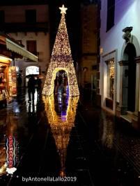 Immagine tratta da repertorio di Onda Lucana®by Antonella Lallo 2019 luci natalizie albero Potenza Via Pretoria