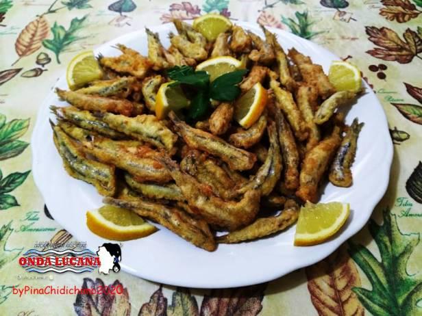 alici fritte dorate Immagine tratta da repertorio di Onda Lucana®by Pina Chidichimo 2020