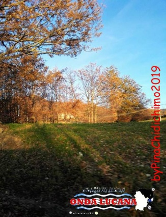 Immagine tratta da repertorio di Onda Lucana®by Pina Chidichimo 2019.jpg0