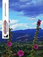 Immagine tratta da repertorio di Onda Lucana®by MikyDaLioni 2020.jpg1