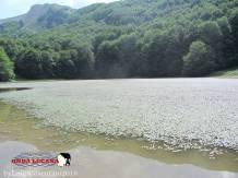Lago Remmo