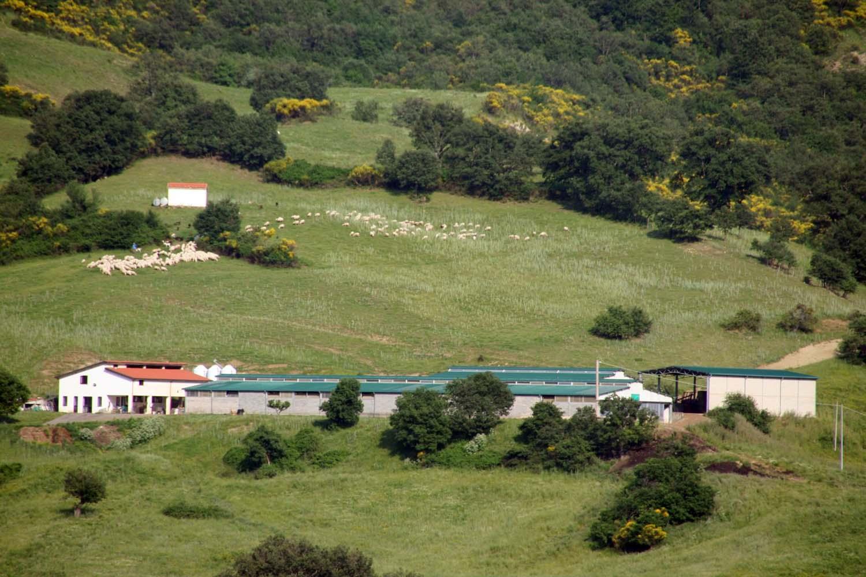 San-Paolo-Albanese-2011-277