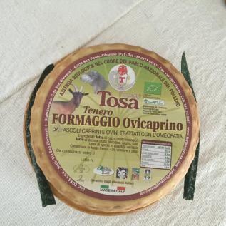 Azienda Agro zootecnica TOSA snc.jpeg7